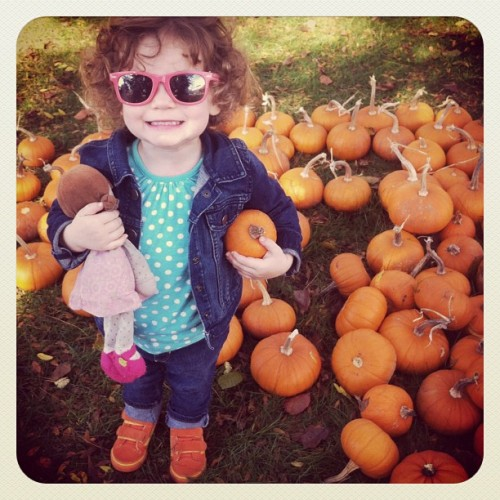 Zoe and the pumpkins